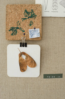 Decorative things on pinboard - GISF000101