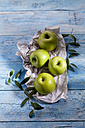 Four Granny Smith on paper - CSF025318