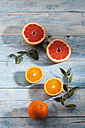 Sliced pink grapefruit, whole and sliced oranges on paper - CSF025323