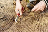 Gardener cutting a chicken wire - HAW000775