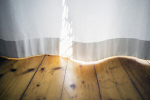 Morning sunlight on a white curtain - RIBF000018