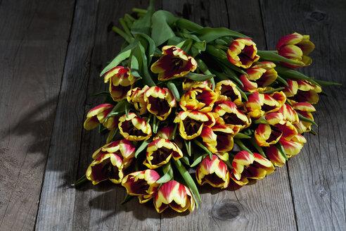 Bouquet of tulips on wood - CSF025357