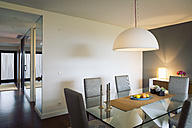 Modern furnished dining room - MSF004503