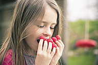 Girl eating raspberries from her fingers - SARF001714