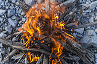 Campfire made from driftwood - TCF004605