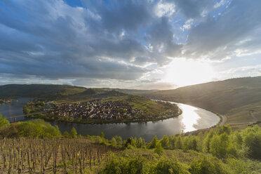 Germany,  Rhineland-Palatinate, Moselle loop Kroev - PAF001391