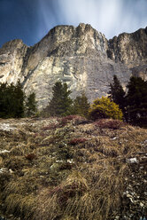 Italy, Trentino-Alto Adige, Dolomites, low angle view from meadow - MKFF000192