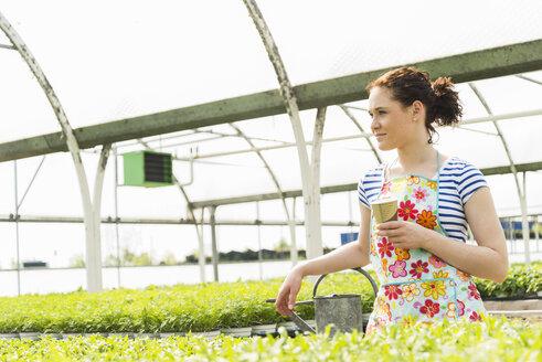 Young female gardener taking a break from watering plants in nursery - UUF003976
