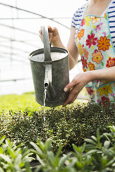 Young female gardener watering plants in nursery - UUF003982