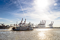 Germany, Hamburg, container cranes and paddlesteamer on River Elbe - EGB000007