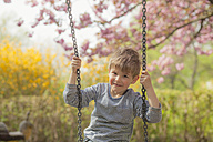 Germany, Berlin, Cherry blossom, Little boy sitting on swing, smiling - MMFF000724