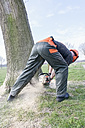 Lumberjack felling tree - NNF000338