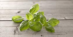 Basil leaves on wood - KSWF001465