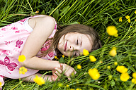 Smiling little girl with closed eyes lying on a flower meadow - SARF001778