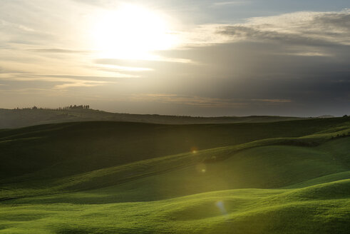 Italy, Tuscany, Val d'Orcia, rolling landscape at backlight - MKFF000200