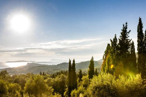 Greece, Corfu, cypresses at the coast in sunlight - EGBF000063