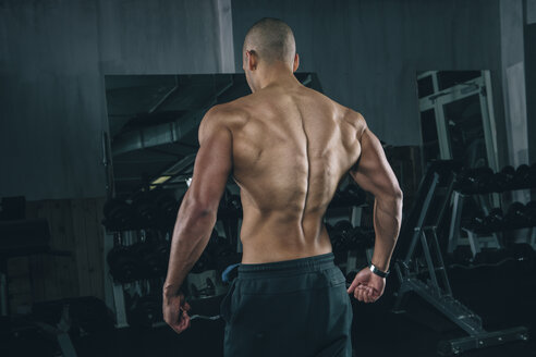 Back muscles of a young man at gym - MADF000317