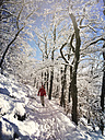 Germany, Palatinate Forest, woman in winter forest - GWF004014