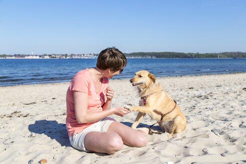 Germany, Kiel, woman sitting with her dog on sandy beach - JFEF000672