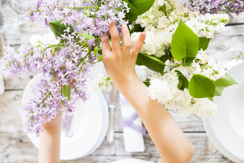 Girl setting a table, lilac flowers - LVF003418