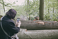 Germany, Bielefeld, mother taking picture of boy behind log in forest - MMFF000781