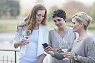 Three women with glasses and smartphone on terrace of a restaurant - ZEF005099