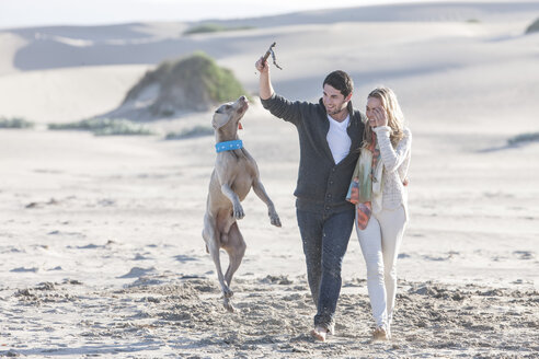 South Africa, Cape Town, young couple on the beach with dog - ZEF005233