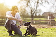 Man training his dog on a meadow - TAMF000179