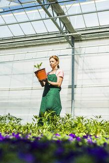 Woman in nursery holding flower pot - UUF004348