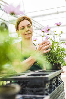Woman in nursery looking at flower - UUF004351