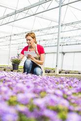 Woman in nursery looking at flower holding digital tablet - UUF004487