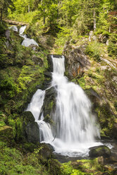 Germany, Schwarzwald-Baar District, Triberg waterfalls - ELF001501