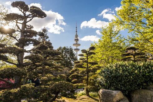 Germany, Hamburg, Japanese garden at Planten un Blomen park and TV Tower - EGBF000124