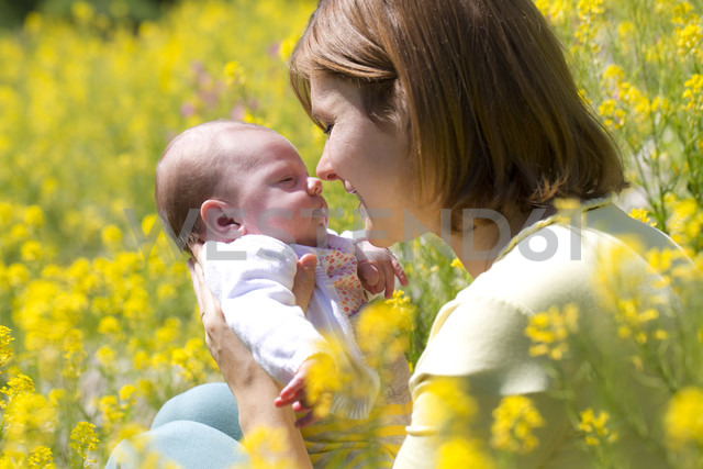 Mother with her baby girl on yellow blossoming field of flowers - WWF003900