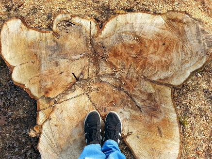 Shoes on tree stump, Waldenburg, Germany - ALF000538