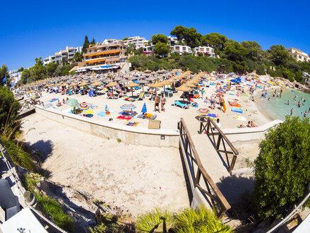 Spain, Mallorca, View to Cala Ferrera, beach with tourists - AMF004045