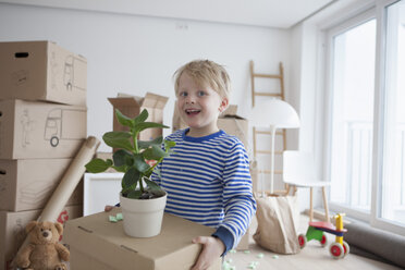 Little blond boy helping with cardboard boxes - RBF002820