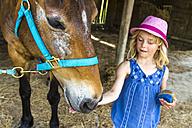 Greece, Corfu, Agios Georgios, little girl stroking horse - JFEF000686