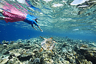 Maldives, turtle and woman snorkeling in the Indian Ocean - STKF001307