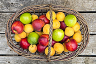 Wickerbasket of limes, apricots and nectarines - SARF001876
