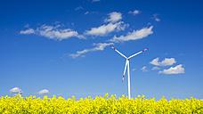 Germany, Baden-Wuerttemberg, Tomerdingen, wind wheel, rape field - WGF000669