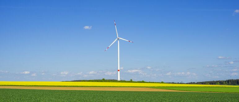 Germany, Tomerdingen, wind park, rape field - WGF000670