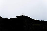 Switzerland, Lac de Cheserys, silhouette of Alpine Ibex on a rock - LOMF000017