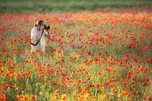 Man photographing in a poppy field - YRF000089