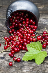 Fresh red currants in zinc bowl - SARF001966