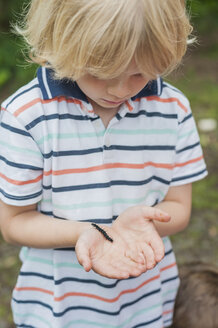 Germany, Little boy looking at caterpillar of peackock butterfly - MJF001558