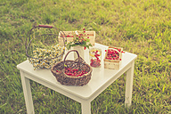 Chamomile flowers and red currants on a table - MJF001601