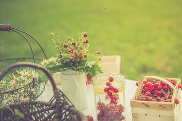 Chamomile flowers, woodland strawberries and red currants on a table - MJF001602