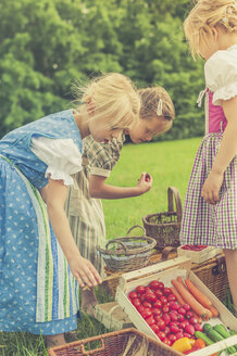 Germany, Saxony, three little girls in traditonal clothes with their harvest  on a meadow - MJF001604