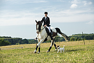 Woman riding horse on a meadow while her dog running beside - TAM000238